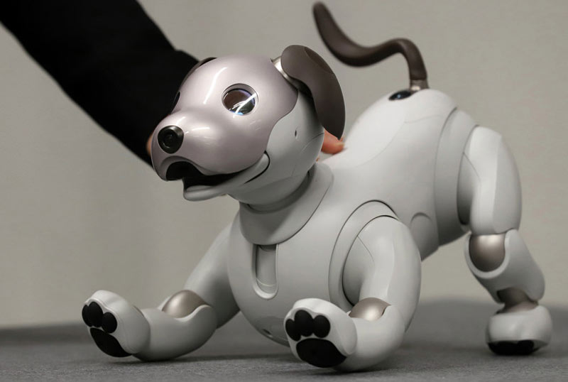 Small Robots That Will Invade Your Home Sooner Than You